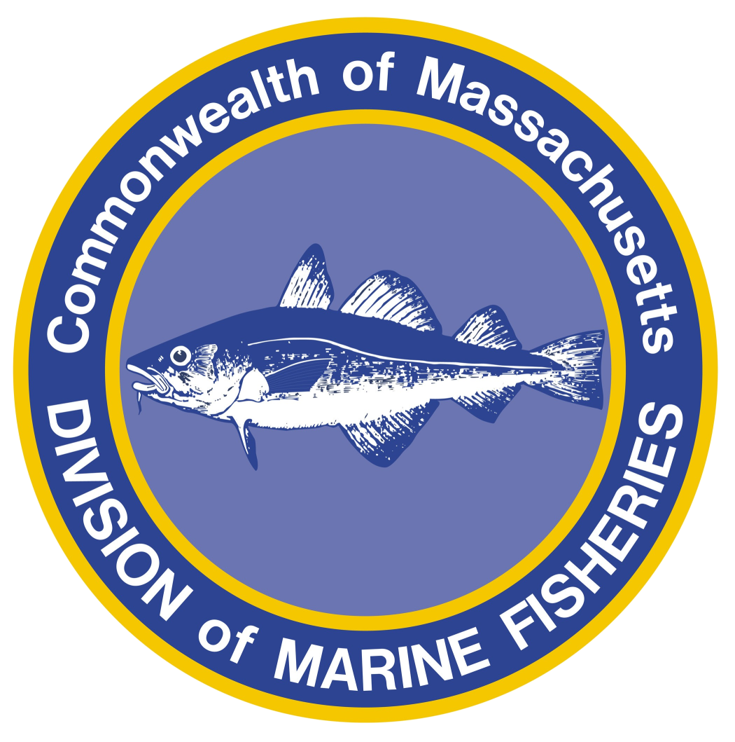 Division of Marine Fisheries