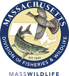 MassWildlife's Natural Heritage & Endangered Species Program