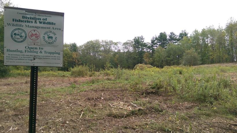 Moose Brook Wildlife Management Area