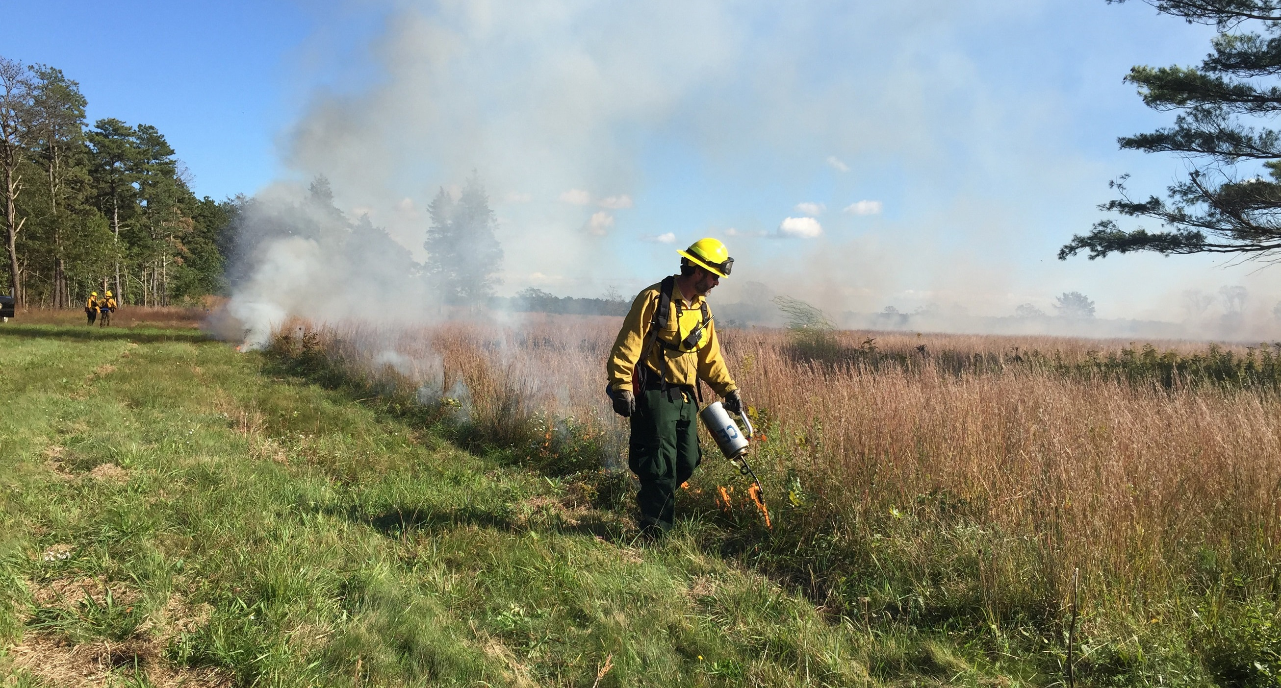 Igniting a prescribed fire.