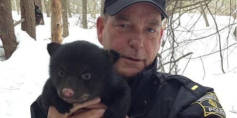 Environmental Police Officer holding black bear cub
