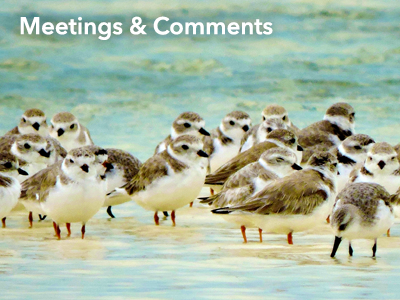 Meetings & Comments: Calendar, Events, Hearings