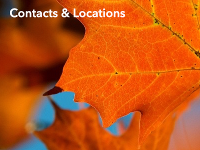 Contacts & Locations: Offices, File Review, Complaints