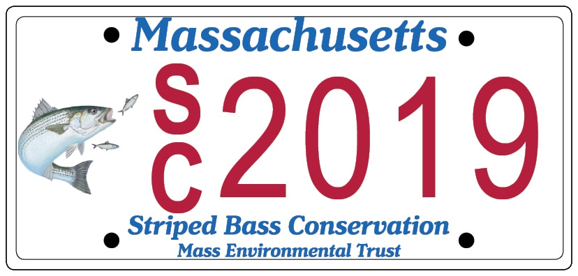 striped bass license plate image