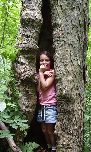 girl inside tree trunk