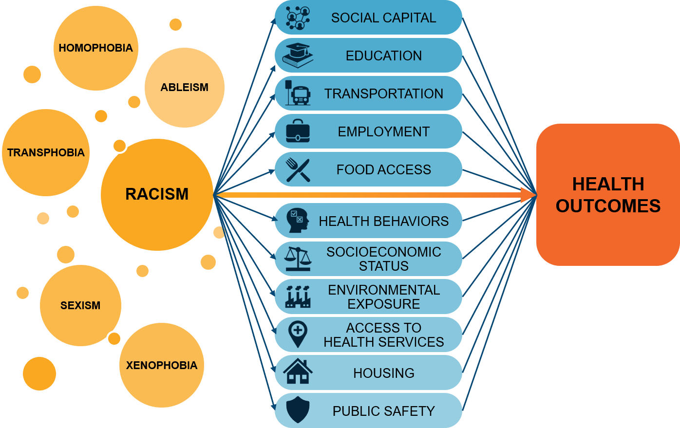 Racism impacts social capital, education, transportation, employment, food access, health behaviors, socioeconomic status, environmental exposure, access to health services, housing, and public safety. All of these impact health outcomes.