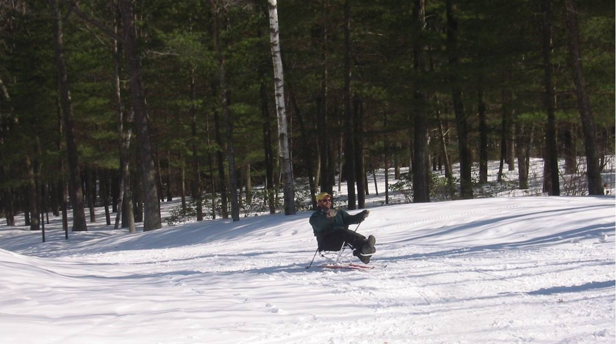 A skier using a sit ski on a gentle slope. trees are behind the skier.