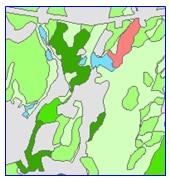 Sample of Prime Forest Land