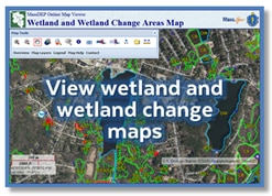 View wetland and wetland change maps