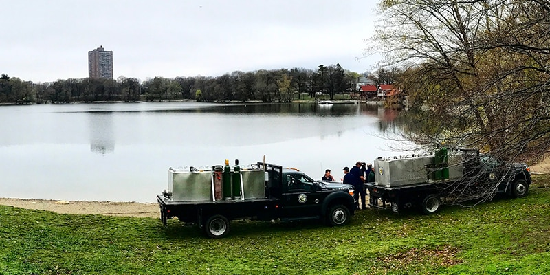 Fall Trout Stocking | Mass gov
