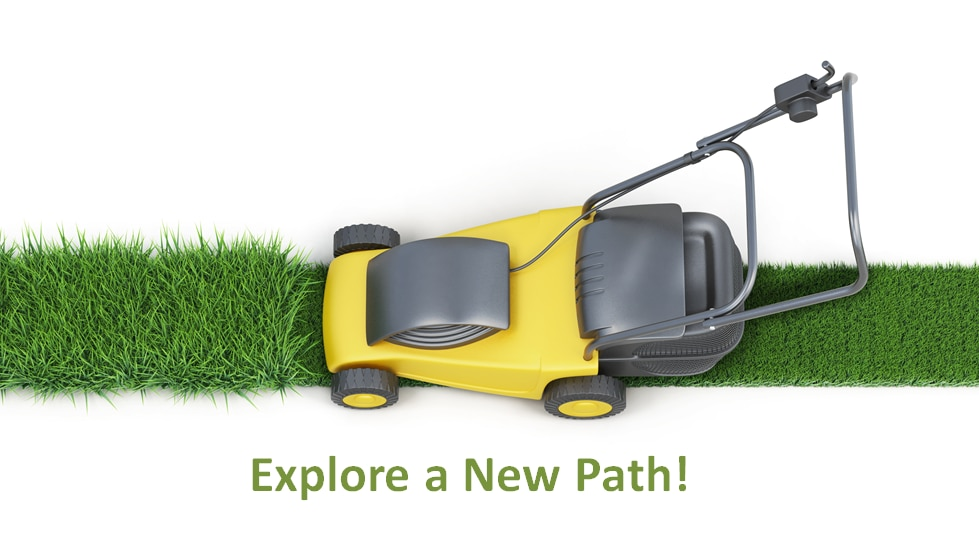 Electric Lawnmower On Grass