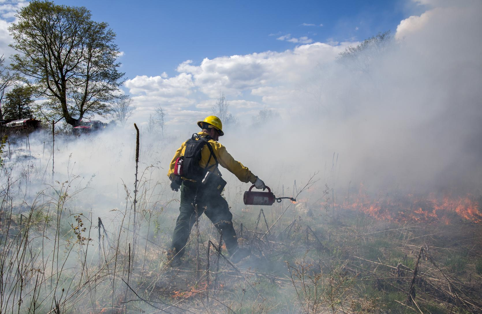 A prescribed burn crew member igniting a burn unit.
