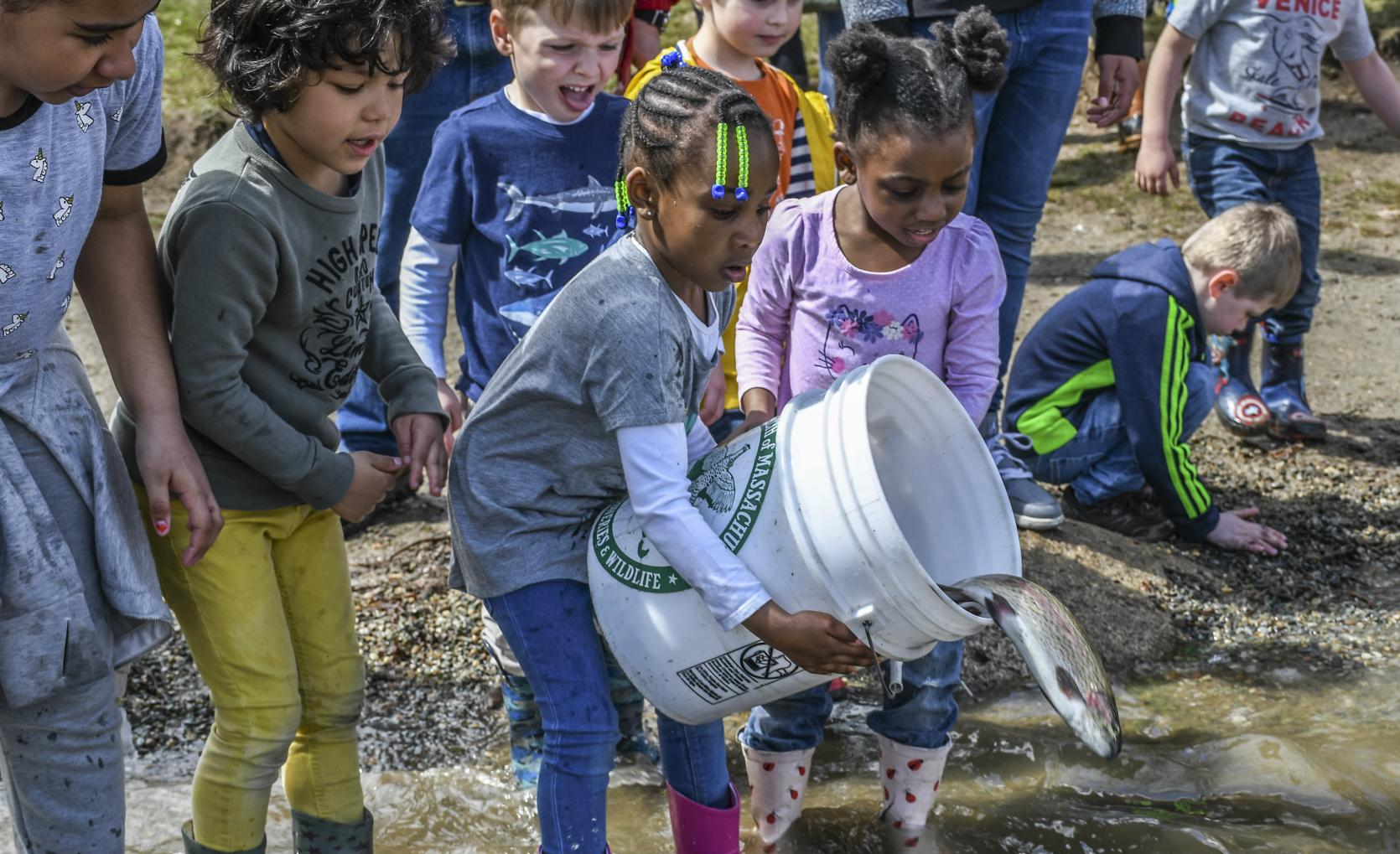 Children helping with trout stocking