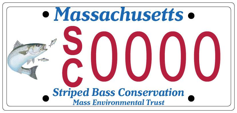 Striped Bass Conservation Specialty License Plate