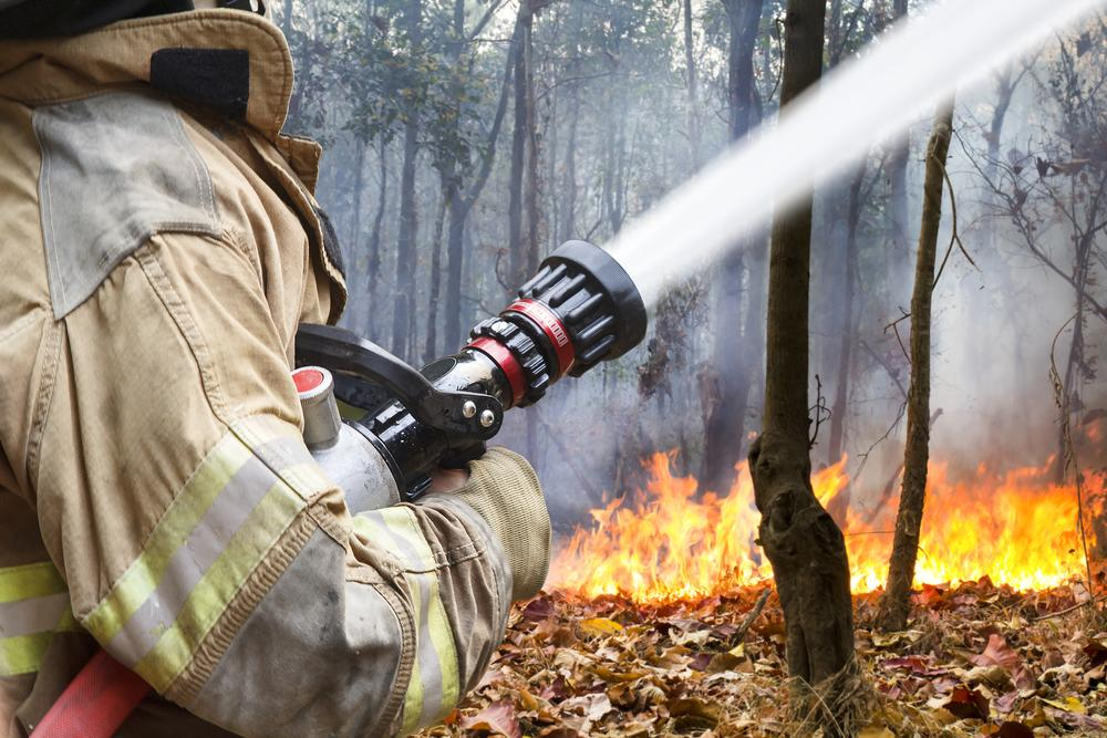 Firefighter fighting woodland fire