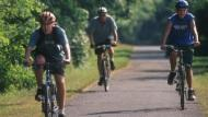 Three boys biking along a paved bike path.
