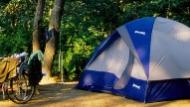 Pitched tent in the woods
