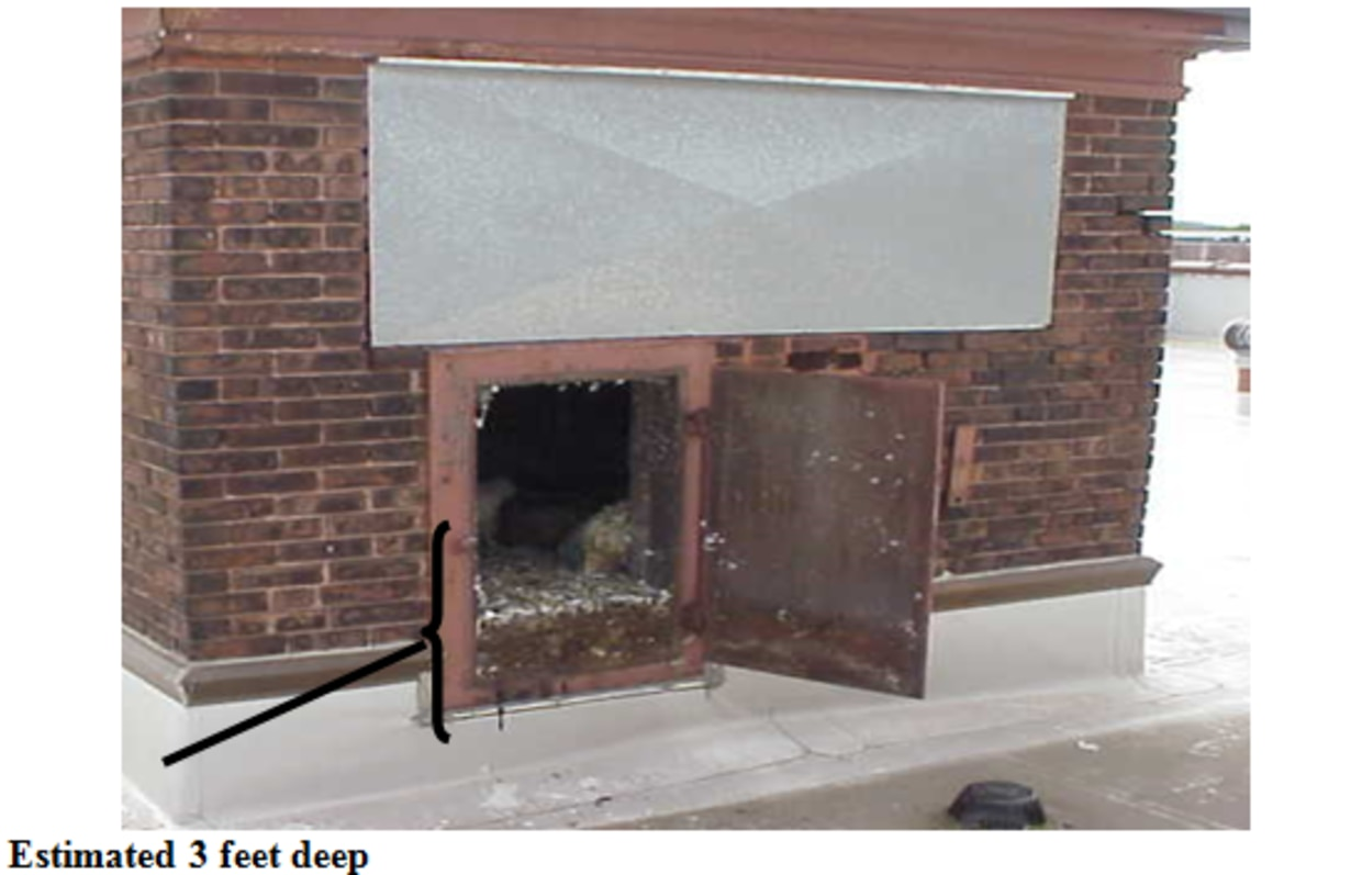 Accumulation of bird waste in an exhaust ventilation system of a school
