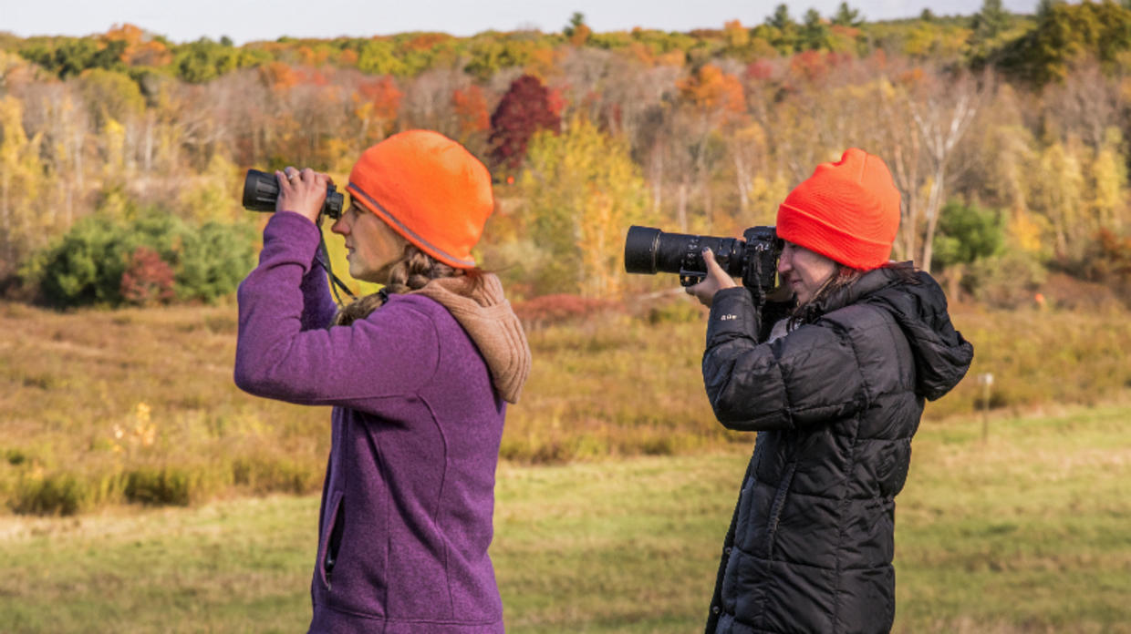 Bird watcher and wildlife photographer