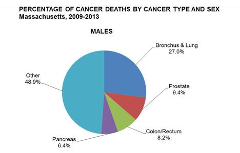 Pie chart of the percentage of cancer deaths by cancer type in males in Massachusetts, 2009-2013