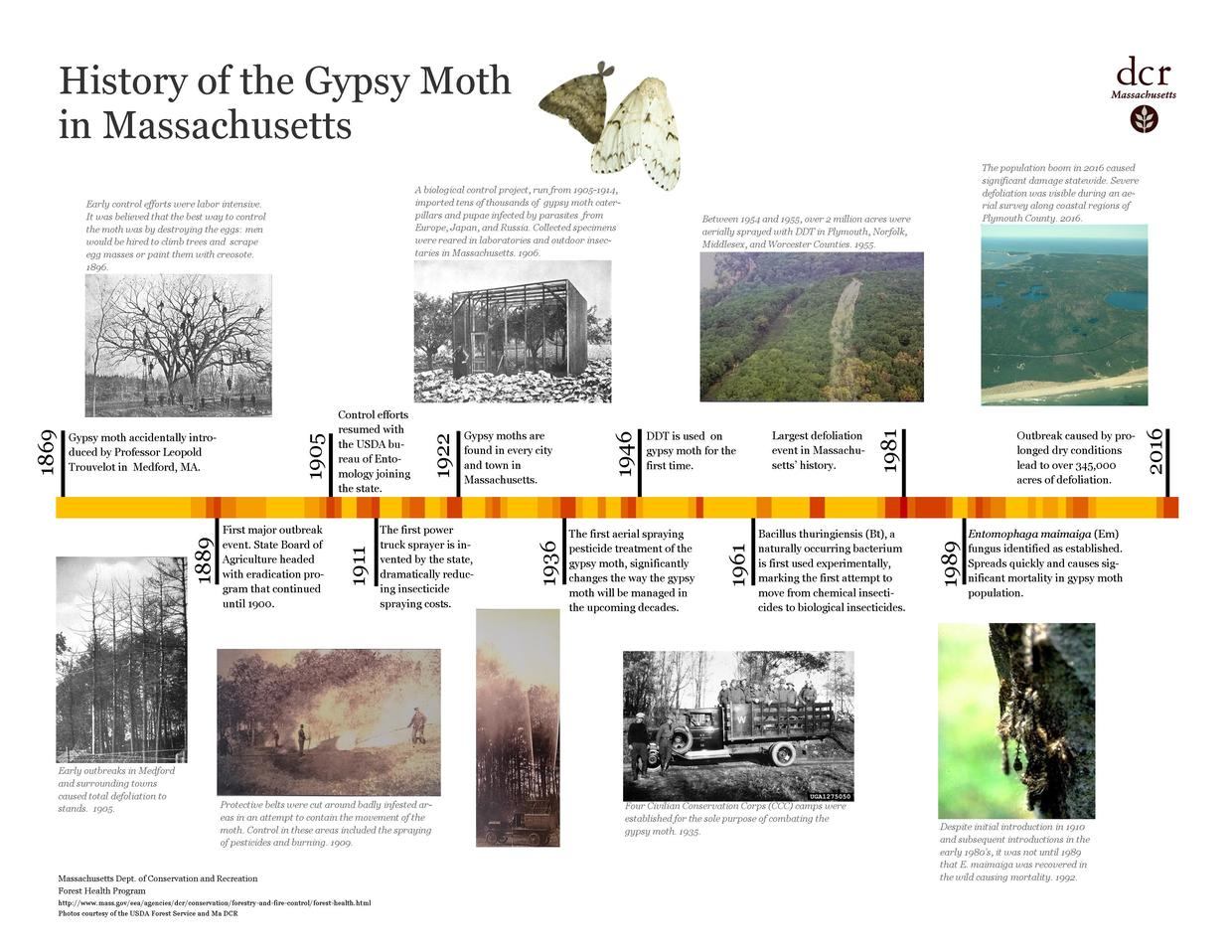 Gypsy Moth Historic Timeline