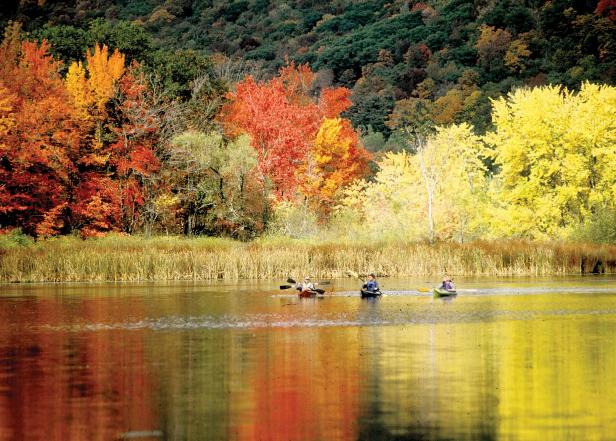 fall foliage and boaters