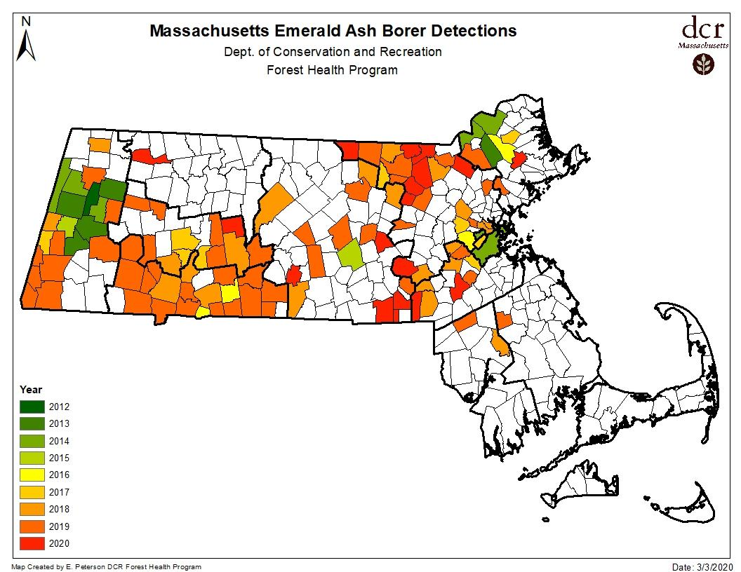 EAB Detected as of March, 3, 2020