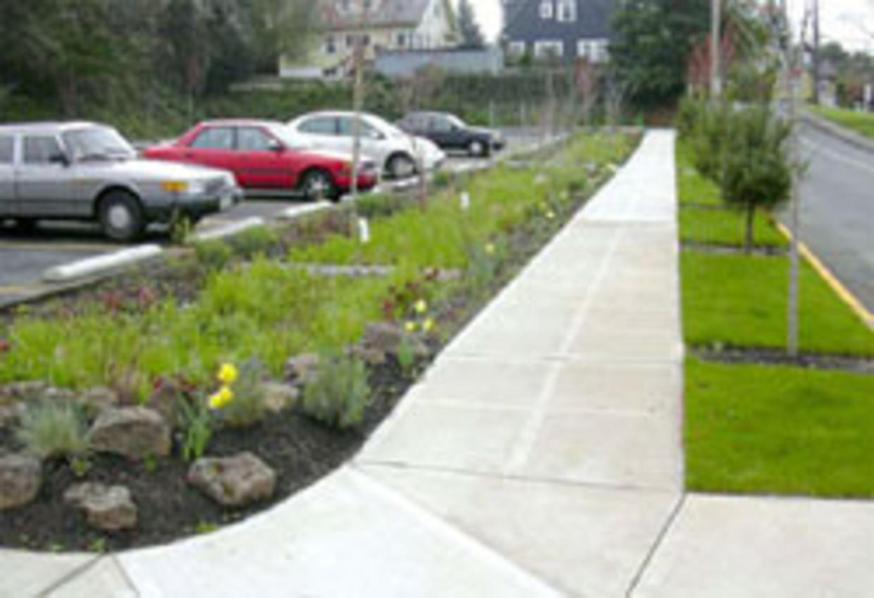 This rain garden placed between the parking lot and sidewalk captures rainfall, allowing it to infiltrate rather than flowing onto the street