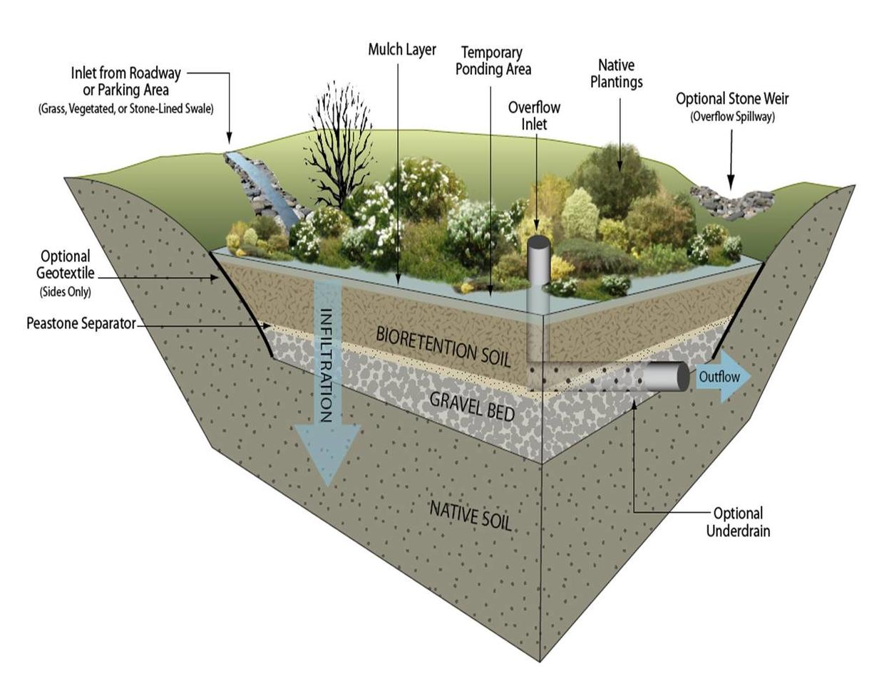 Bioretention cell detail (image credit: GeoSyntec Consultants)