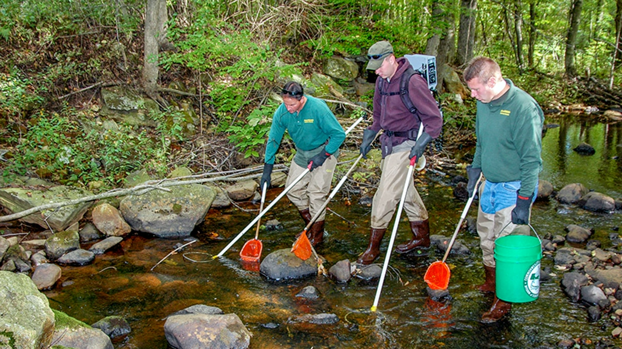 Sampling cold water stream