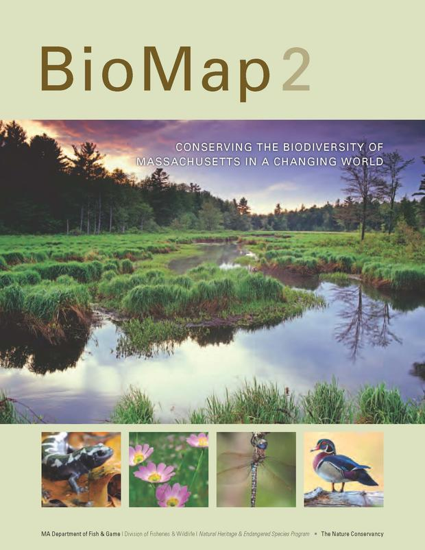 Biomap2 Conserving The Biodiversity Of Massachusetts In A