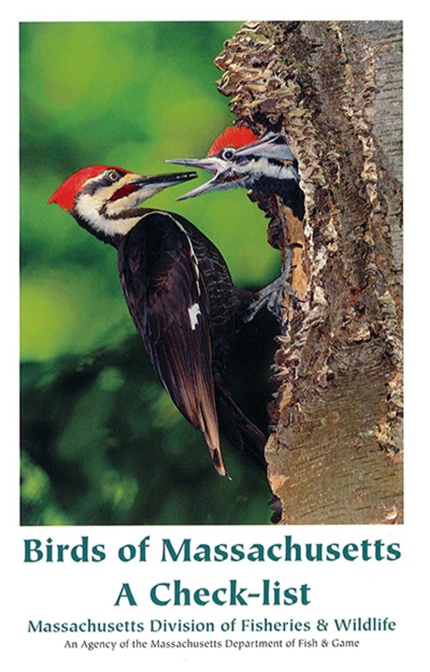 Buteo books & aba sales: aba birders' guides.