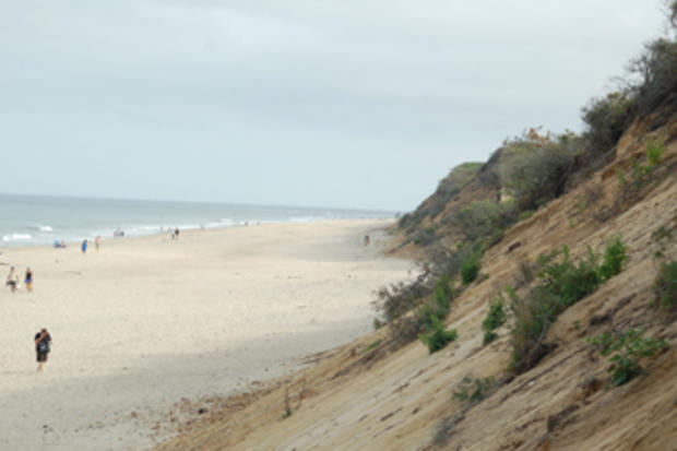 This eroding coastal bank provides sand and sediment to adjacent beaches.