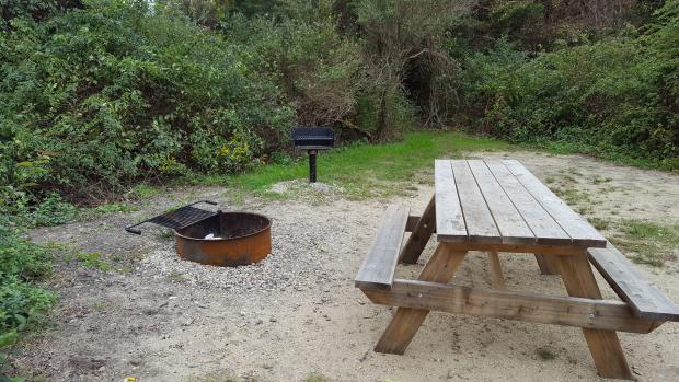 A picnic table, a fire ring, and a pedestal grill are located close to each other in a flat cleared area. The cleared area is surrounded by dense brush.