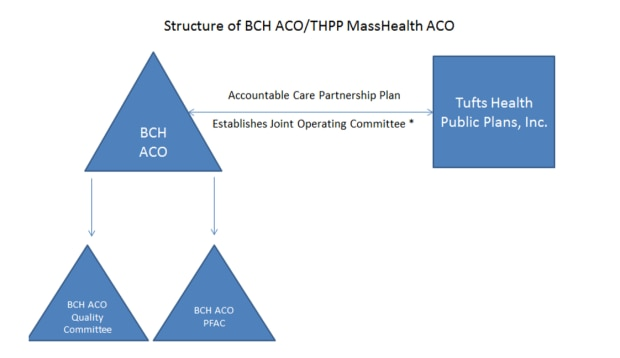 Figure 1: THPP and BCH ACO Governing Structure	   schematic depicting BCH ACO's governance structure -blue
