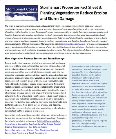 StormSmart Properties Fact Sheet 3: Planting Vegetation to Reduce Erosion and Storm Damage