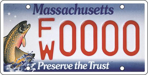 Trout Licence Plate