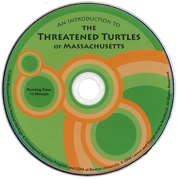 threatened turtles of Massachusetts