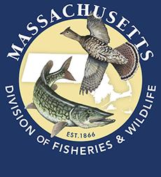 MassWildlife logo