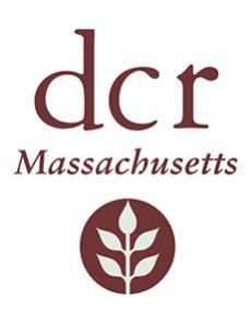 dcr logo - leaf