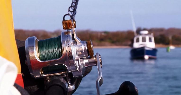 Marine Fisheries Regulations | Mass gov