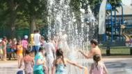 Alfond Memorial Spray Deck