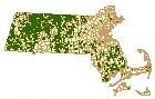Sample of Forest Stewardship Program Properties